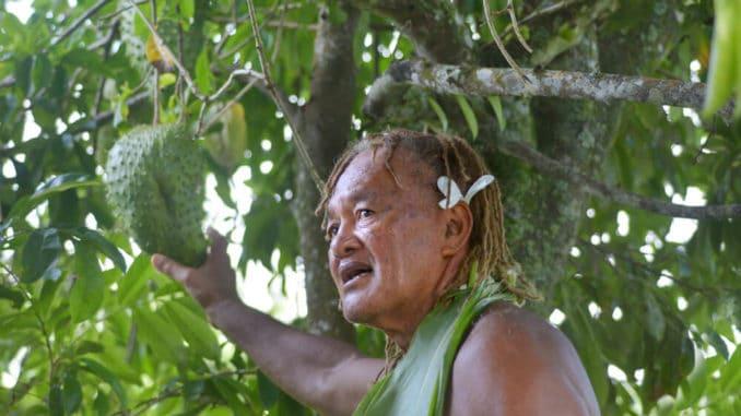 Camu Camu Frucht auf Cook Island